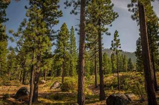 Listing Image 3 for 9523 Dunsmuir Way, Truckee, CA 96161