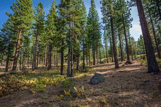 Listing Image 6 for 9523 Dunsmuir Way, Truckee, CA 96161