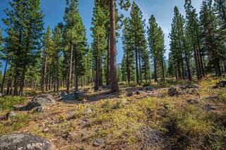 Listing Image 7 for 9523 Dunsmuir Way, Truckee, CA 96161