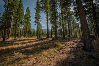 Listing Image 8 for 9523 Dunsmuir Way, Truckee, CA 96161