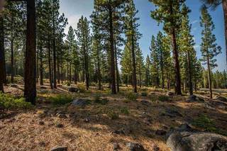 Listing Image 9 for 9523 Dunsmuir Way, Truckee, CA 96161