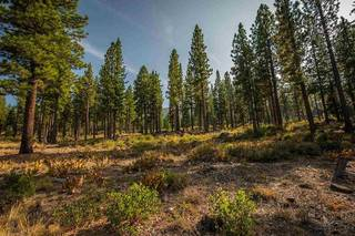 Listing Image 10 for 9523 Dunsmuir Way, Truckee, CA 96161