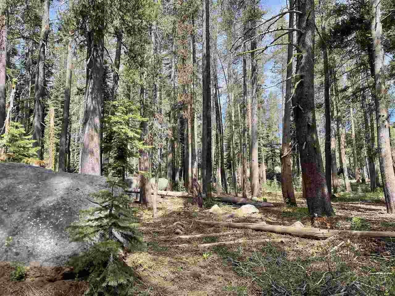 Image for 21337 Castle Drive, Soda Springs, CA 95728