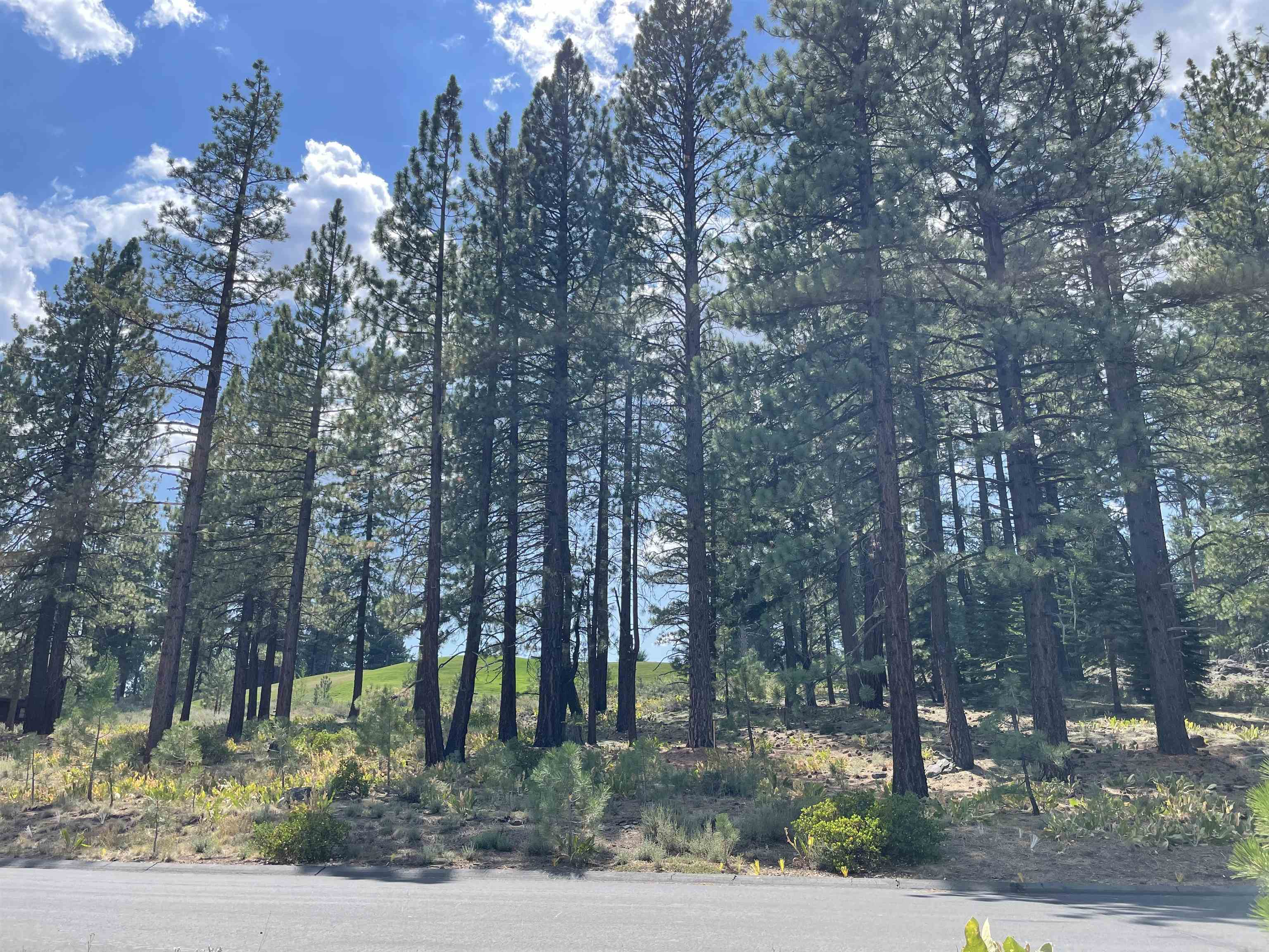 Image for 13316 Snowshoe Thompson, Truckee, CA 96161