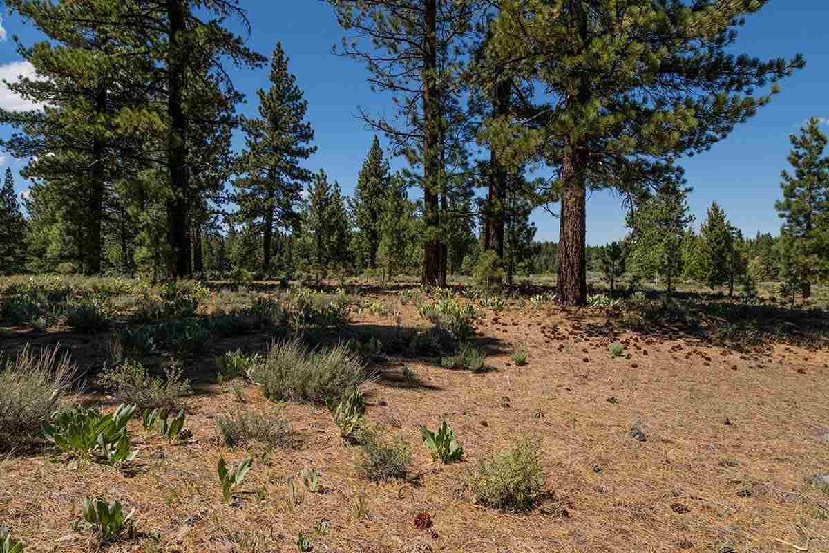Image for 7985 Lahontan Drive, Truckee, CA 96161