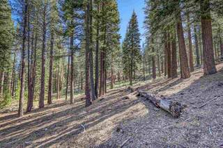 Listing Image 21 for 316 Skidder Trail, Truckee, CA 96161