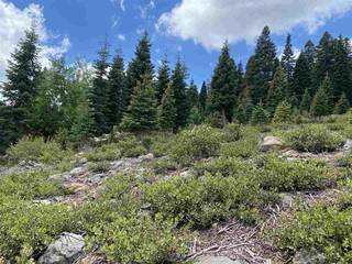 Listing Image 12 for 13094 Skislope Way, Truckee, CA 96161