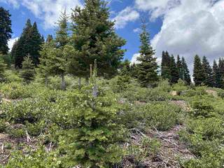 Listing Image 13 for 13094 Skislope Way, Truckee, CA 96161