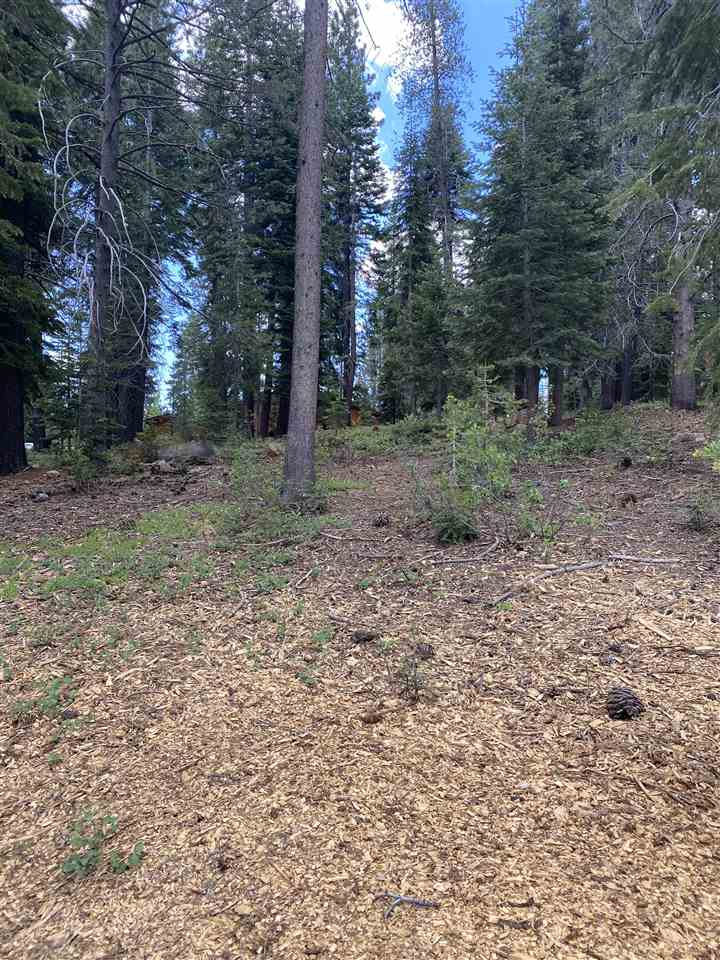 Image for 12755 Zurich Place, Truckee, CA 96161