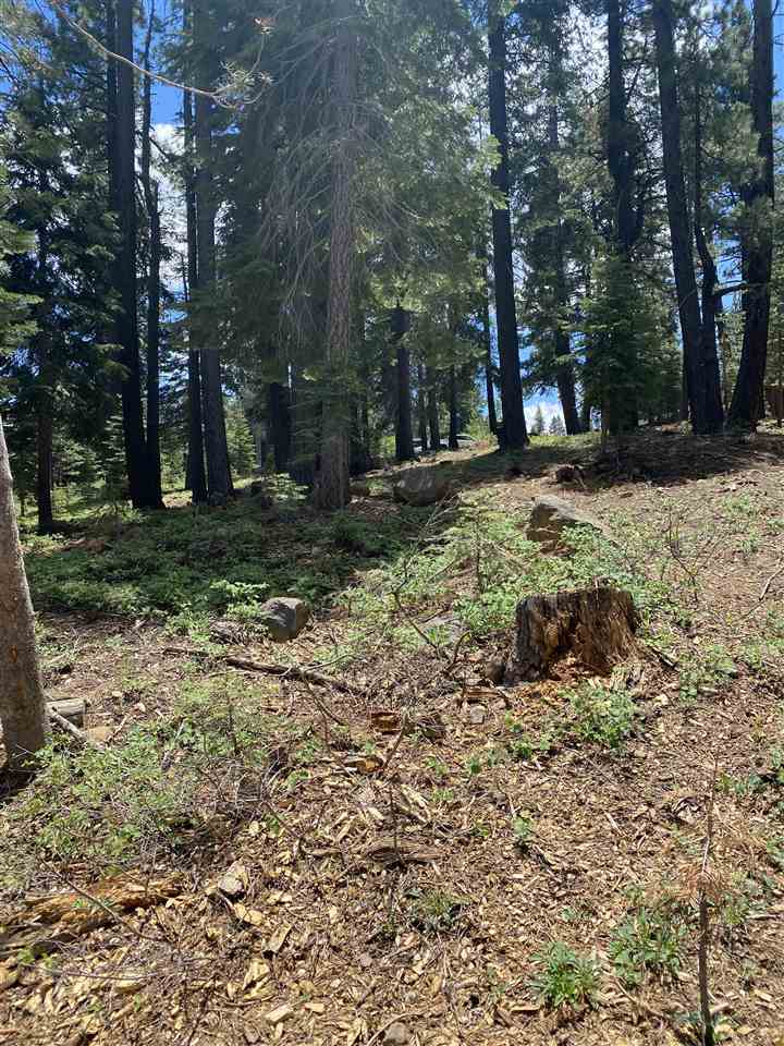 Image for 12815 Zurich Place, Truckee, CA 96161