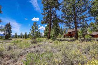 Listing Image 8 for 12447 Settlers Lane, Truckee, CA 96161