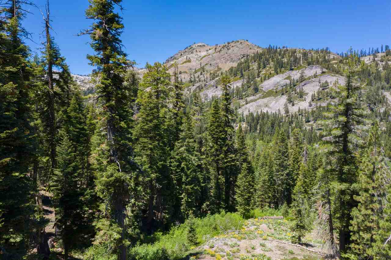 Image for 1410 Chateau Place, Alpine Meadows, CA 96146-1111