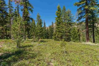 Listing Image 11 for 1410 Chateau Place, Alpine Meadows, CA 96146-1111