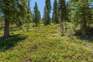 Listing Image 12 for 1410 Chateau Place, Alpine Meadows, CA 96146-1111