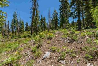 Listing Image 13 for 1410 Chateau Place, Alpine Meadows, CA 96146-1111