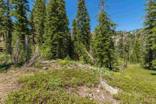 Listing Image 8 for 1410 Chateau Place, Alpine Meadows, CA 96146-1111