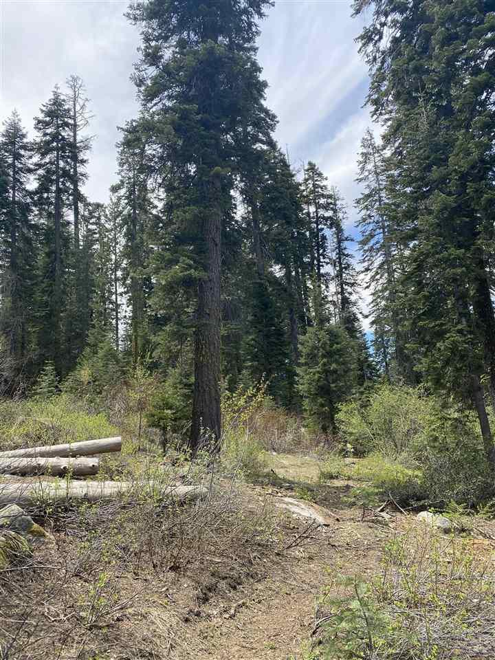 Image for 14660 Devils Peak Road, Truckee, CA 96161