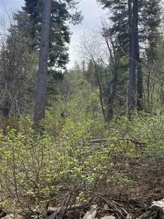 Listing Image 15 for 14660 Devils Peak Road, Truckee, CA 96161