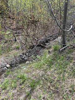 Listing Image 18 for 14660 Devils Peak Road, Truckee, CA 96161