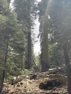 Listing Image 19 for 14660 Devils Peak Road, Truckee, CA 96161