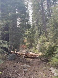 Listing Image 6 for 14660 Devils Peak Road, Truckee, CA 96161