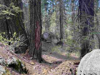 Listing Image 9 for 14660 Devils Peak Road, Truckee, CA 96161