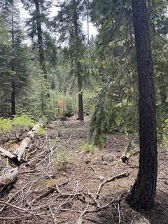 Listing Image 10 for 14660 Devils Peak Road, Truckee, CA 96161