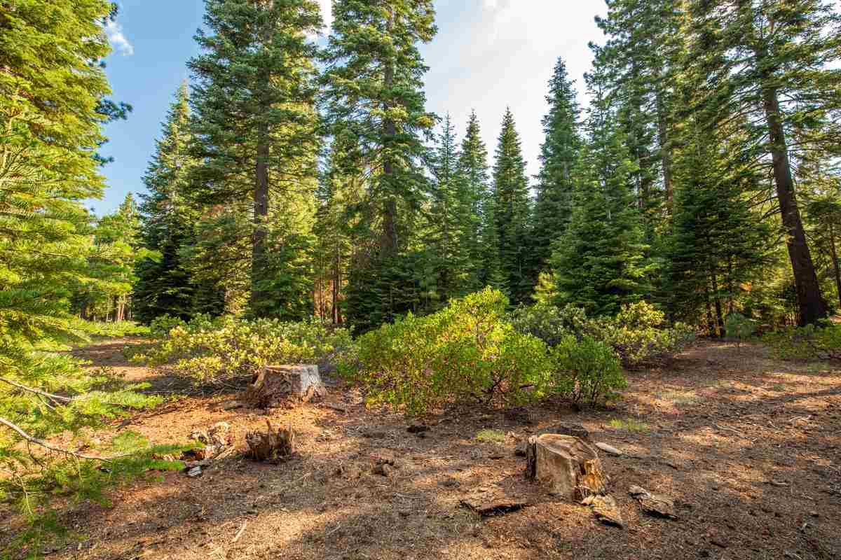 Image for 8406 Valhalla Drive, Truckee, CA 96161