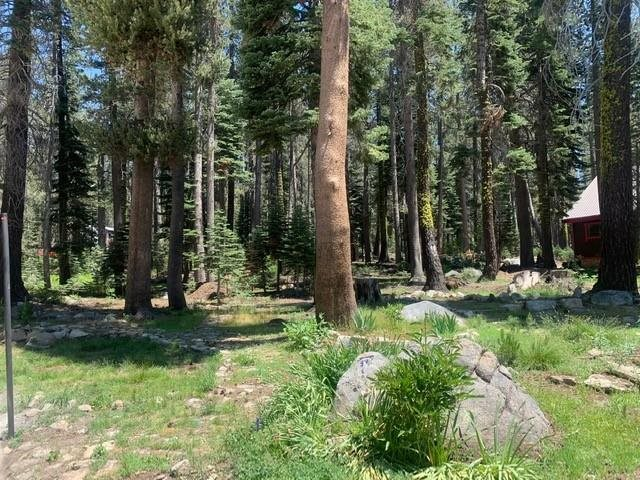 Image for 21164 Donner Pass Road, Soda Springs, CA 95728