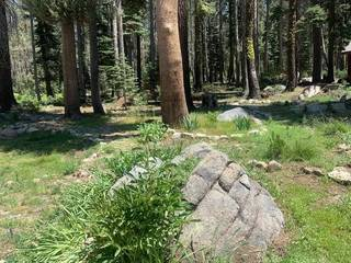 Listing Image 11 for 21164 Donner Pass Road, Soda Springs, CA 95728
