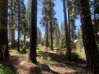 Listing Image 12 for 21164 Donner Pass Road, Soda Springs, CA 95728