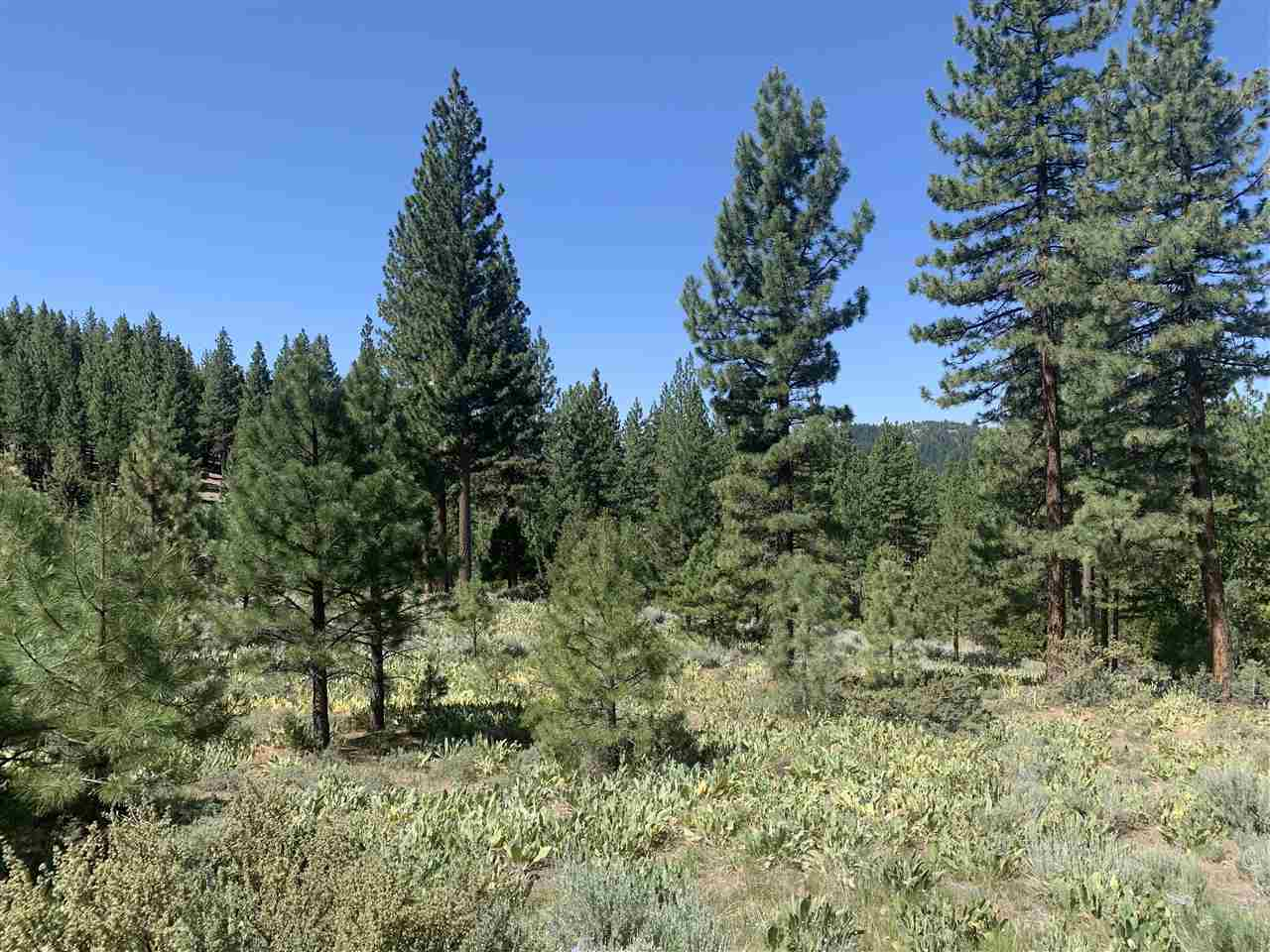 Image for 1865 Grizzly Ranch Road, Portola, CA 96122