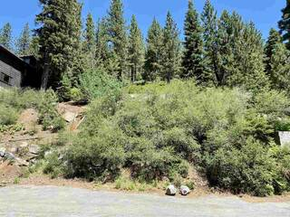 Listing Image 7 for 1542 Sandy Way, Olympic Valley, CA 96146-0000