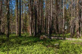 Listing Image 7 for 20850 Donner Pass Road, Soda Springs, CA 95728