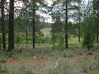 Listing Image 6 for 13207 Snowshoe Thompson, Truckee, CA 96161