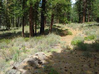 Listing Image 10 for 13207 Snowshoe Thompson, Truckee, CA 96161