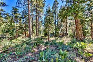 Listing Image 5 for 8898 Cutthroat Avenue, Kings Beach, CA 96143