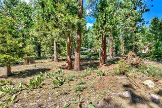 Listing Image 7 for 8898 Cutthroat Avenue, Kings Beach, CA 96143