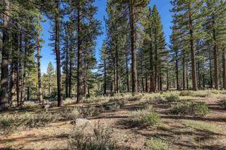 Listing Image 6 for 10576 Brickell Court, Truckee, CA 96161