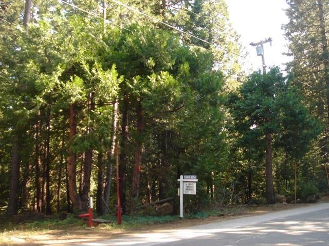 Image for LOT 41 Skyline Drive, Emigrant Gap, CA 95715