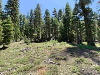 Listing Image 7 for 1445 & 1451 Mineral Springs Trail, Alpine Meadows, CA 94146