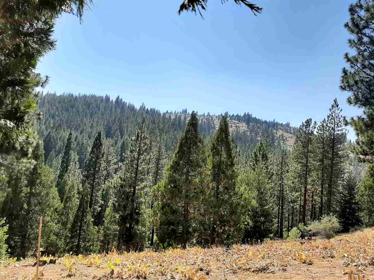 Image for 403 Big Grizzly Road, Portola, CA 96122