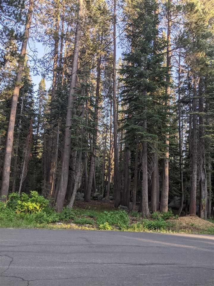 Image for 51782 Tamarack Crescent, Soda Springs, CA 95728