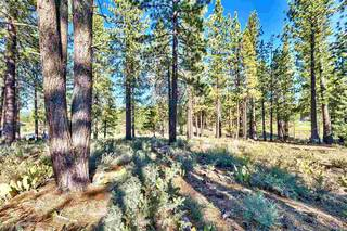 Listing Image 21 for 9106 Heartwood Drive, Truckee, CA 96161