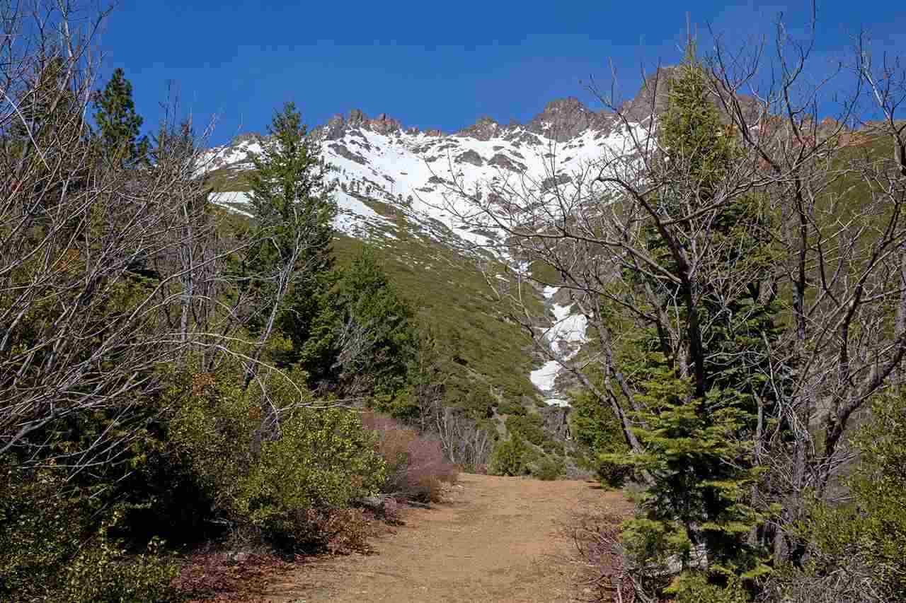 Image for 008-120-029 Sierra Buttes Road, Sierra City, CA 96125