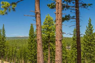 Listing Image 7 for 8124 Fallen Leaf Way, Truckee, CA 96161