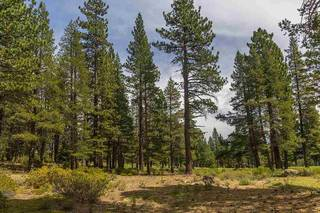 Listing Image 3 for 8860 George Whittell, Truckee, CA 96161