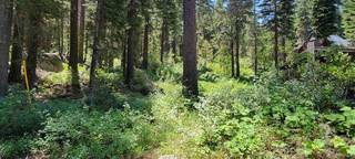 Listing Image 2 for 15311 South Shore Drive, Truckee, CA 96161
