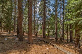 Listing Image 17 for 10145 Martis Valley Road, Truckee, CA 96161-0000