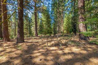 Listing Image 14 for 11072 China Camp Road, Truckee, CA 96161